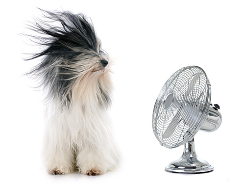 With our Air Conditioning repair in Denton TX, BCI Mechanical, Inc. will keep you comfortable in your home!